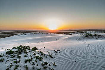 South Padre Island para The Nature Conservancy. ©Kenny Braun.