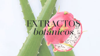 Glosario Ingredientes Mary Kay -  Extractos botánicos